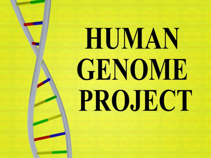 3D illustration of HUMAN GENOME PROJECT-basis of genetic testing-with DNA double helix, isolated on colored background.